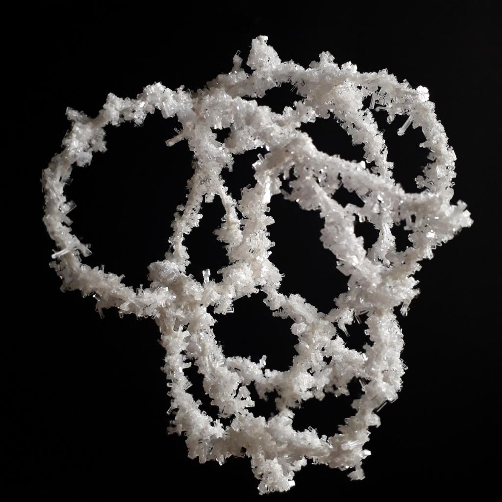 pactum salis jean-marc lefevre